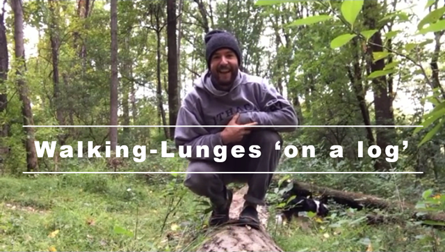 Walking-Lunges 'on a log'