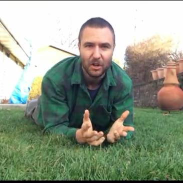 Mastering The Mammalian Crawl